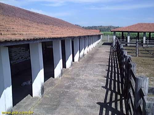 excelente fazenda em piracicaba sp - Imagem3