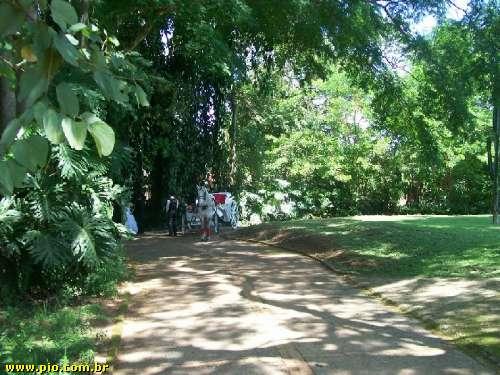 maravilhoso sítio em indaiatuba - Imagem6