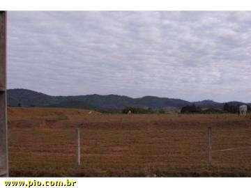 ÁREA INDUSTRIAL - 8 hec - BR-101 - BARRA VELHA-SC - REBELLO IMÓVEIS - Imagem3
