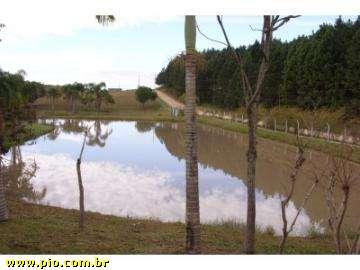 ÁREA INDUSTRIAL - 8 hec - BR-101 - BARRA VELHA-SC - REBELLO IMÓVEIS - Imagem8